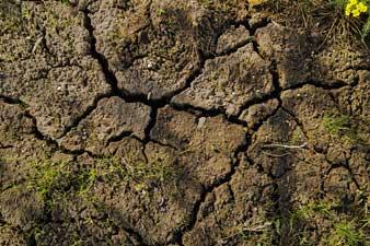 Soil stabilisation